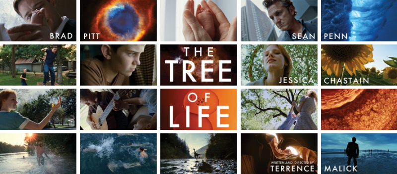 Tree of life 800x352 Trailer: Tree of Life mit Brad Pitt und Sean Penn