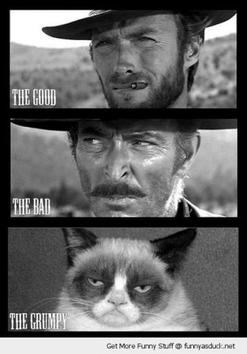 funny-angry-cat-good-bad-grumpy-ugly-clint-eastwood-pics