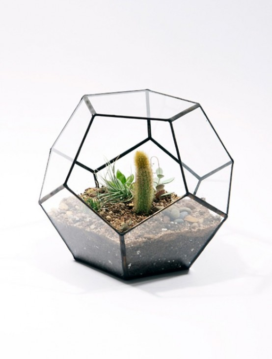 Stylish-glass-terrariums-for-growing-green-plants-05_furnime