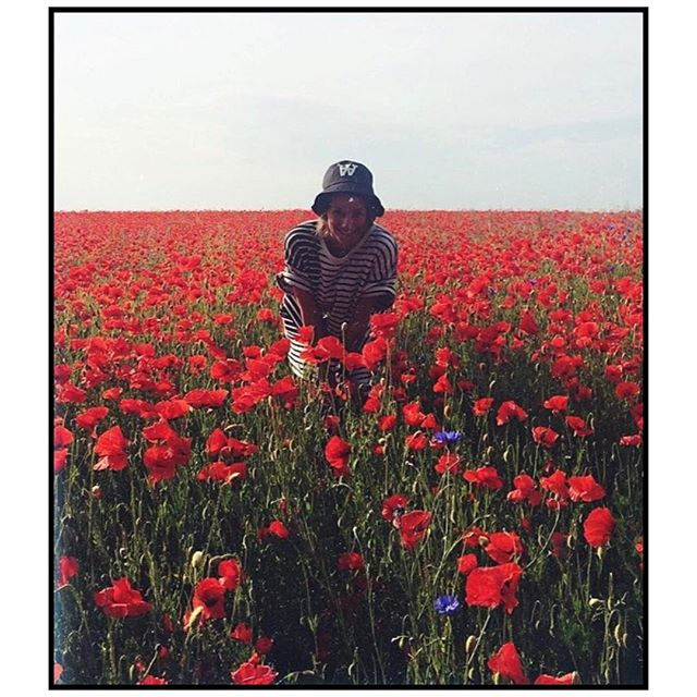 When there was spring ️ #poppyfield